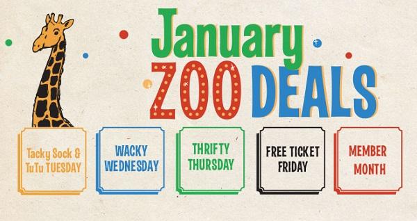 January Zoo Deals