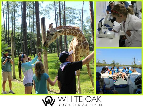 White Oak Conservation Camp
