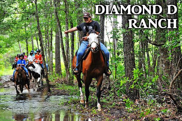Diamond D Ranch Summer Camp
